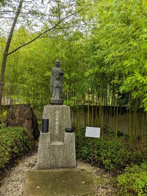 Bambus-Hain
